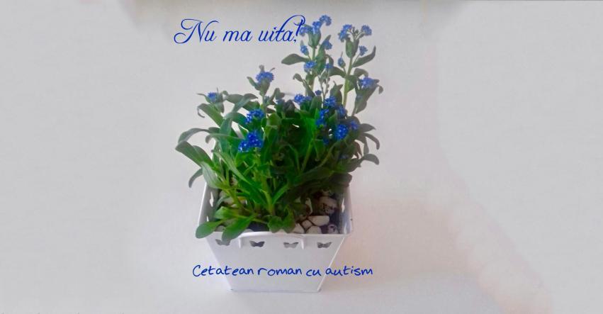 """Flori albastre de """" Nu mă uita""""  de Ziua Internaţională a Conştientizării Autismului"""