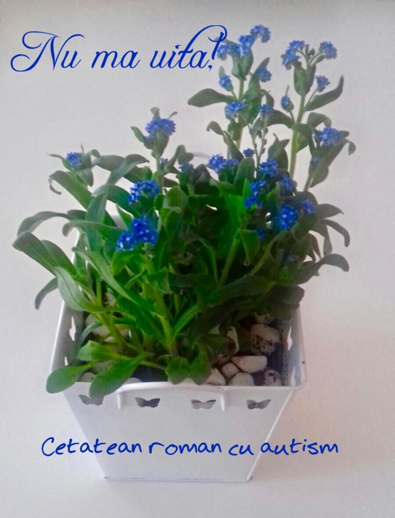 """Flori de """"Nu mă uita"""" oferite de cetăţenii cu autism Guvernului - 005"""