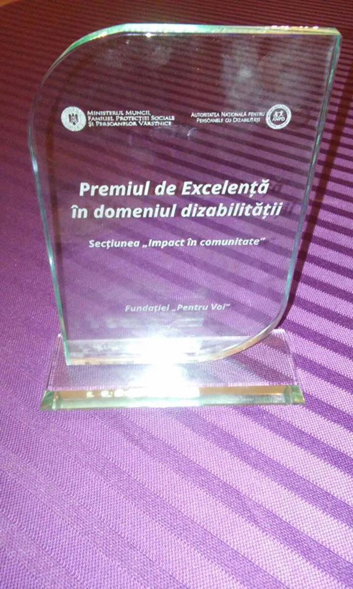 Fundatia Pentru Voi a castigat competitia pentru primul Premiu de Excelenta in domeniul dizabilitatii! - 001